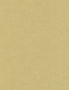 Curious Metallic - Gold Leaf Card Stock - 111lb Cover - 50 Sheets Per Pack