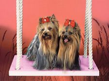 YORKSHIRE TERRIER CUTE DOG GREETINGS NOTE CARD TWO DOGS SIT ON SWING YORKIE