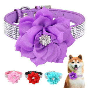 Bling Dog Collar with Big Flower Cat Puppy Diamond Necklace Soft Suede Leather