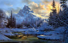Modern Home Decor Oil Painting Print on Canvas Snow Scene Forest Gift Art Wall
