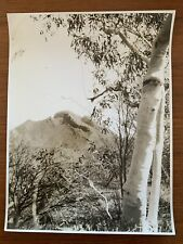 Vintage Real Photograph 1930's Mt Liebig  Central Australia Adelaide University