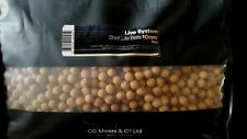 LIVE SYSTEM SHELFLIFE BOILIES, by CC MOORE, CARP FISHING.10MM,TRIAL PACK,3 POST
