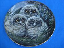 Danbury Mint Short-eared Baby Owls Collectible Plate #B780 by Dick Twinney Coa