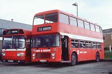 RED & WHITE GTX755W 6x4 Quality Bus Photo