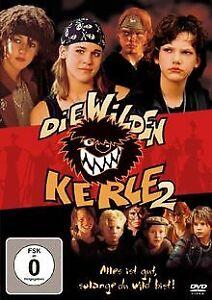 Die wilden Kerle 2 von Joachim Masannek   DVD   Zustand gut