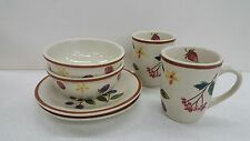 Longaberger Berry Fruit Medley Pottery Combo Plates Bowls Mugs Tie-On NEW!!