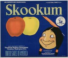 SKOOKUM Vintage Doc Apple Inset, Indian, **AN ORIGINAL FRUIT CRATE  LABEL** spot