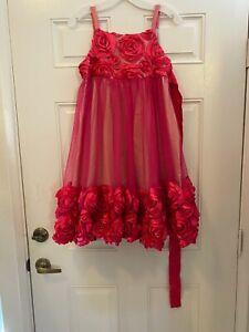 Bonnie Jean Beatiful Pink Rose Ribbon Dress Girls 16 Fully Lined