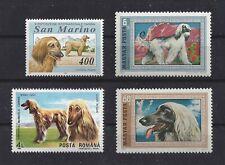 Dog Art Head & Body Study Portrait Postage Stamp Collection Afghan Hound 4 x Mnh