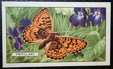 Pearl-bordered Fritillary      Vintage Butterfly Card   VGC