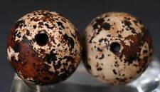 China Ethnic culture Brown-white Tubular or Round Beads! Folk Amulet