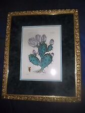 Dan Mitra Botanical Print Matted and Framed Numbered Signed
