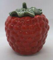 Vintage Raspberry Canister Cookie Jar Ceramic Texas