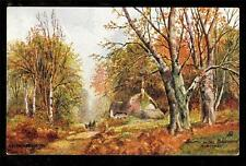 Tuck art signed Bridgeman Autumn in the Bolderwood Hampshire UK postcard