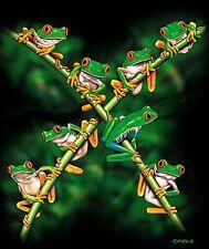 """JQ Licensing Presents """"Rainforest Hangout""""  Frog Queen Size Blanket"""