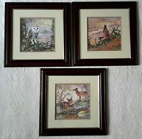 3 x Glenda Rae Signed Prints Owl Pheasant Deer Framed