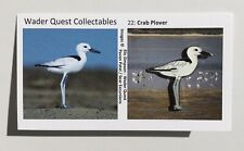 NEW No.22 Crab Plover Enamelled Pin Badge | Wader Quest Bird Pin - Not RSPB
