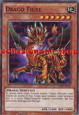 LDK2-ITK15 DRAGO TIGRE - COMUNE - ITALIANO - COLLEZIONAMI SHOP