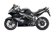 TRIUMPH TOUCH UP PAINT 955i T595 509 675 TIGER STREET TRIPLE ROCKET JET BLACK.