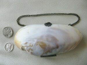 Antique Victorian Red Interior Old World Clasp Hinge Sea Shell Purse 1900s #2
