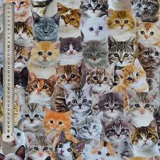 Lifelike Cats & Kittens Fabric - Digital Print, Upholstery, Curtain, 100% Cotton