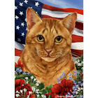 Tabby Orange Patriotic Flag