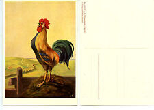 Early Bird-Rooster Crowing-Rural Country-Schonermark Art Drawing-German Postcard