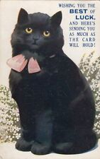 CAT:  Wishing you the BEST of LUCK-a black cat-BALMFORTH