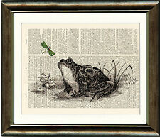 Old Antique Dictionary page Art Print - Frog and Dragonfly Upcycled page Print