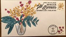 2019 Winter Berries FDC Beautyberry Soapberry Dual Cancel Hand Drawn Cachet #/1