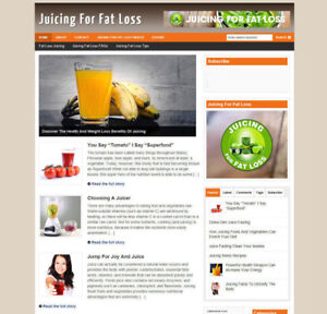 JUICING FOR FAT LOSS BLOG WITH AFFILIATE WEBSITE AND NEW DOMAIN + HOSTING