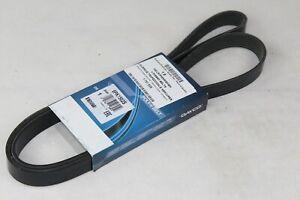 Cinghia Scanalata 1,0 Motore a Benzina Ford Focus - C-Max - Fiesta Dayco