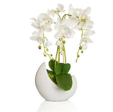 deko blumen k nstliche pflanzen mit bertopf g nstig kaufen ebay. Black Bedroom Furniture Sets. Home Design Ideas