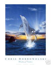 """NEW! Dolphin I 18x24"""" Art Print Poster by Dobrowolski"""
