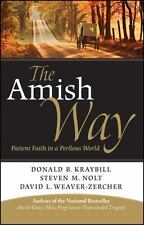 The Amish Way : Patient Faith in a Perilous World by Donald B. Kraybill Book
