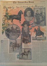 NOV 10, 1913 NEWSPAPER #J5593- EQUESTRIAN- BEAUTY PAYS ITS TRIBUTE TO THE HORSE