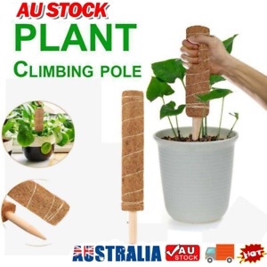 Coir Moss Totem Pole Creeper Plant Support Climbing Extension Stick Goody AU