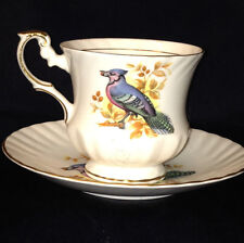 QUEENS ROSINA ENGLAND BIRDS OF AMERICA FOOTED CUP & SAUCER BLUE JAYS GOLD TRIM