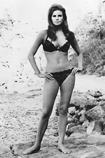 Raquel Welch photo barefoot bikini 11x17 Mini Poster