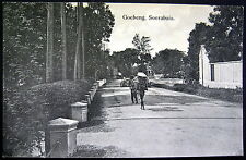 DUTCH INDIES ~ INDONESIA ~ EAST JAVA ~ 1900's SOERABAJA ~ GOEBENG ~