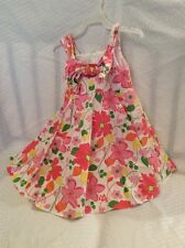EUC Plum Pudding Toddler Spring, Summer Holiday Dress Size 3T Color Flora