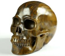 """Huge 5.0"""" UNKNOWN STONE Carved Crystal Skull, Realistic, Crystal Healing"""