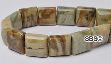 Silverleaf Jasper 10x10mm 2-Hole Square Stone Beads (approx. 16 inch strand)