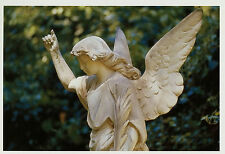 Ansichtskarte Postkarte Motiv Engel Hauptfriedhof Frankfurt Main  Cemetery Nr 22