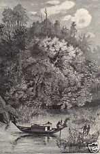 Antique print river Dodinga Papoea Nieuw Guinea VOC