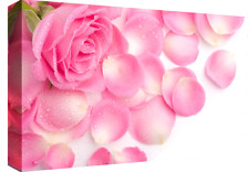 "LARGE PINK ROSES & RAINDROPS CANVAS PICTURE WALL ART A1 34"" X 20"""