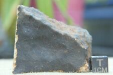 Gatuto Meteorite from Kenya Fell on 4/24/2020 witnessed fall 57g end cut