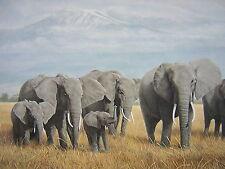 Charles Frace Treasures of Africa Elephant LTD ED Print