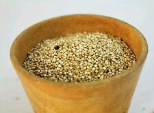 ☺10000 graines d amarante