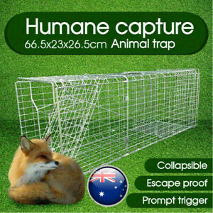 Animal Trap Cage Folding Humane Live Catch Possum Fox Rat Cat Rabbit Bird